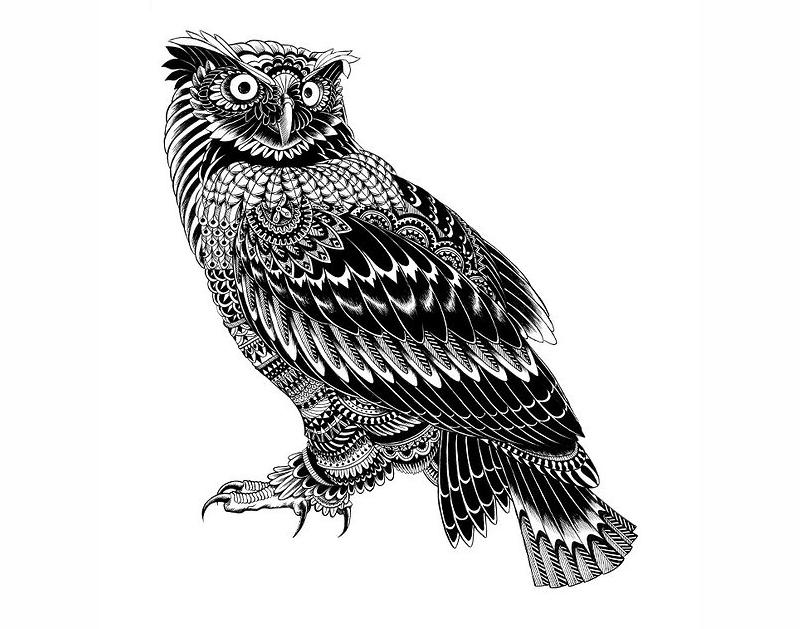 Bioworkz Owl